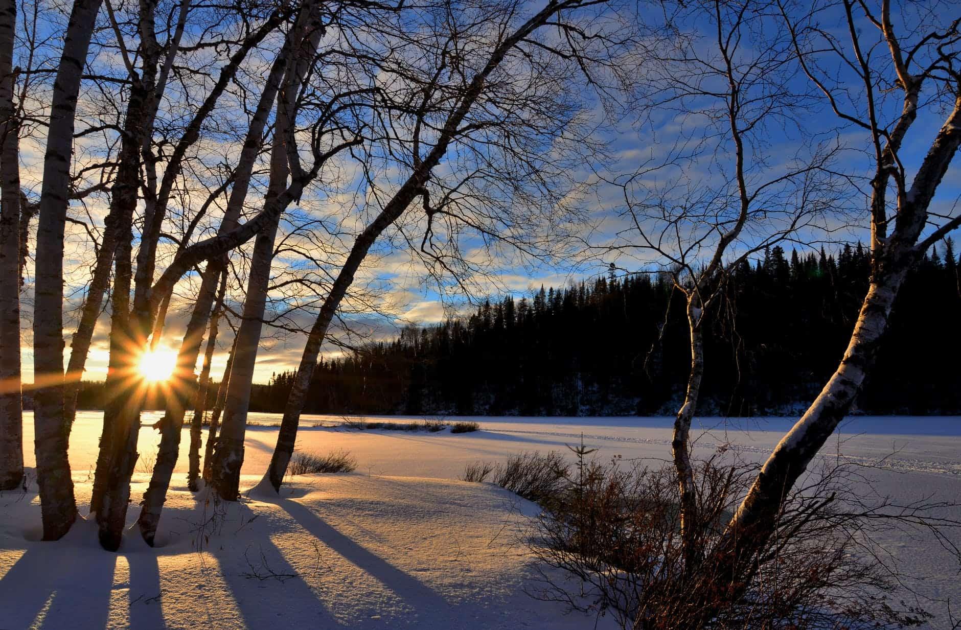 Zonlicht in winterlandschap